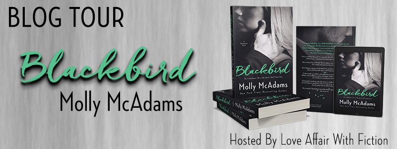 Blackbird BT Banner.jpg