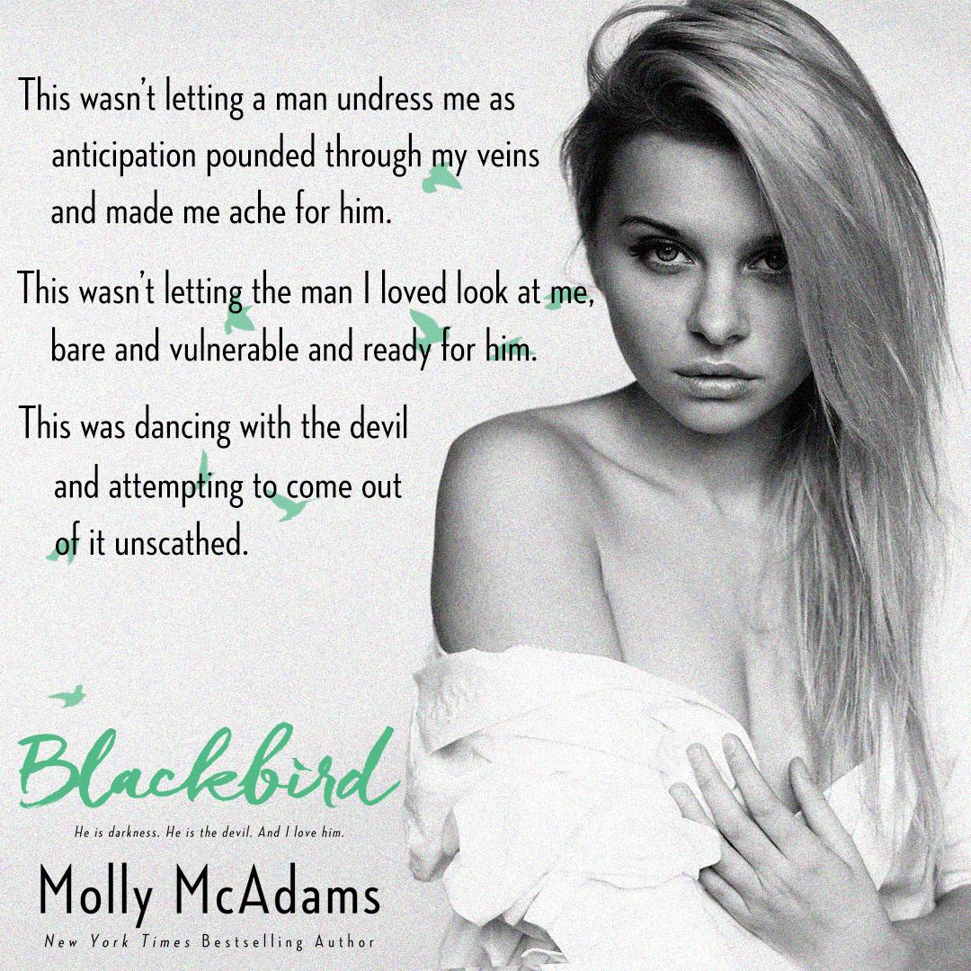 Blackbird Teaser #1.jpg