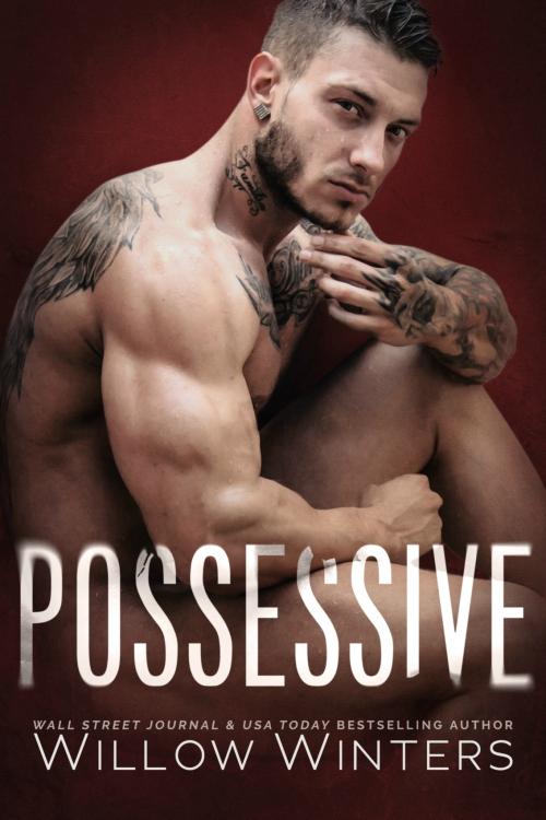 Possessive Ebook Cover