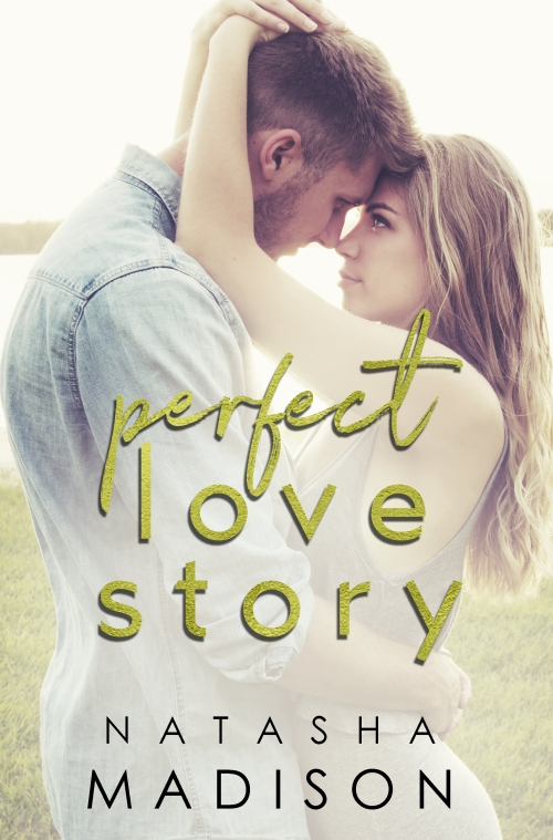 perfect love story ebook