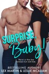 Surprise, Baby! Ebook Cover